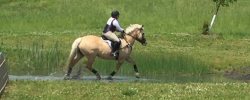 05/29/16 Burgundy Hollow Horse Trials – Recap