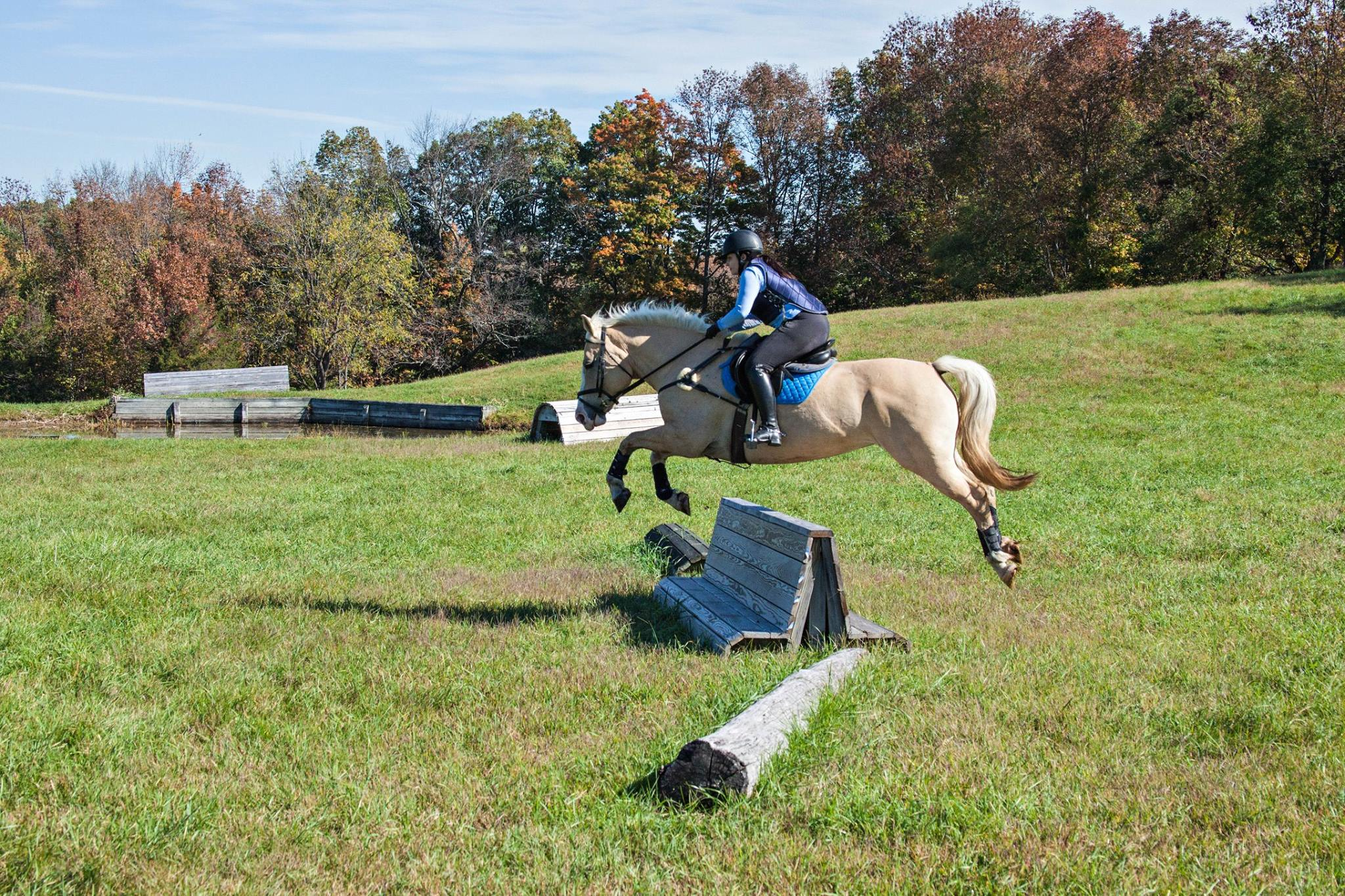 Reintroducing Jumping
