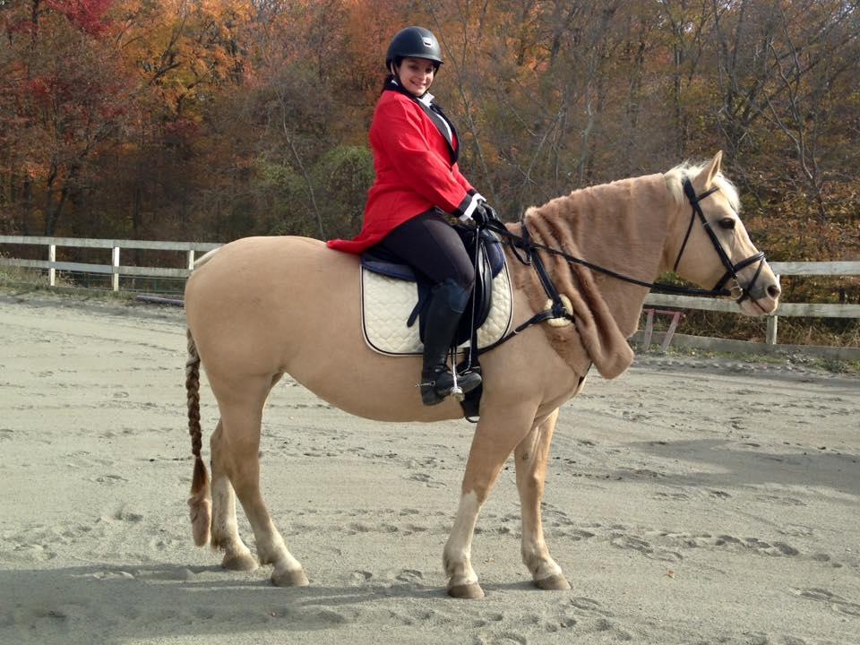 How Do We Grow Horse Sports?
