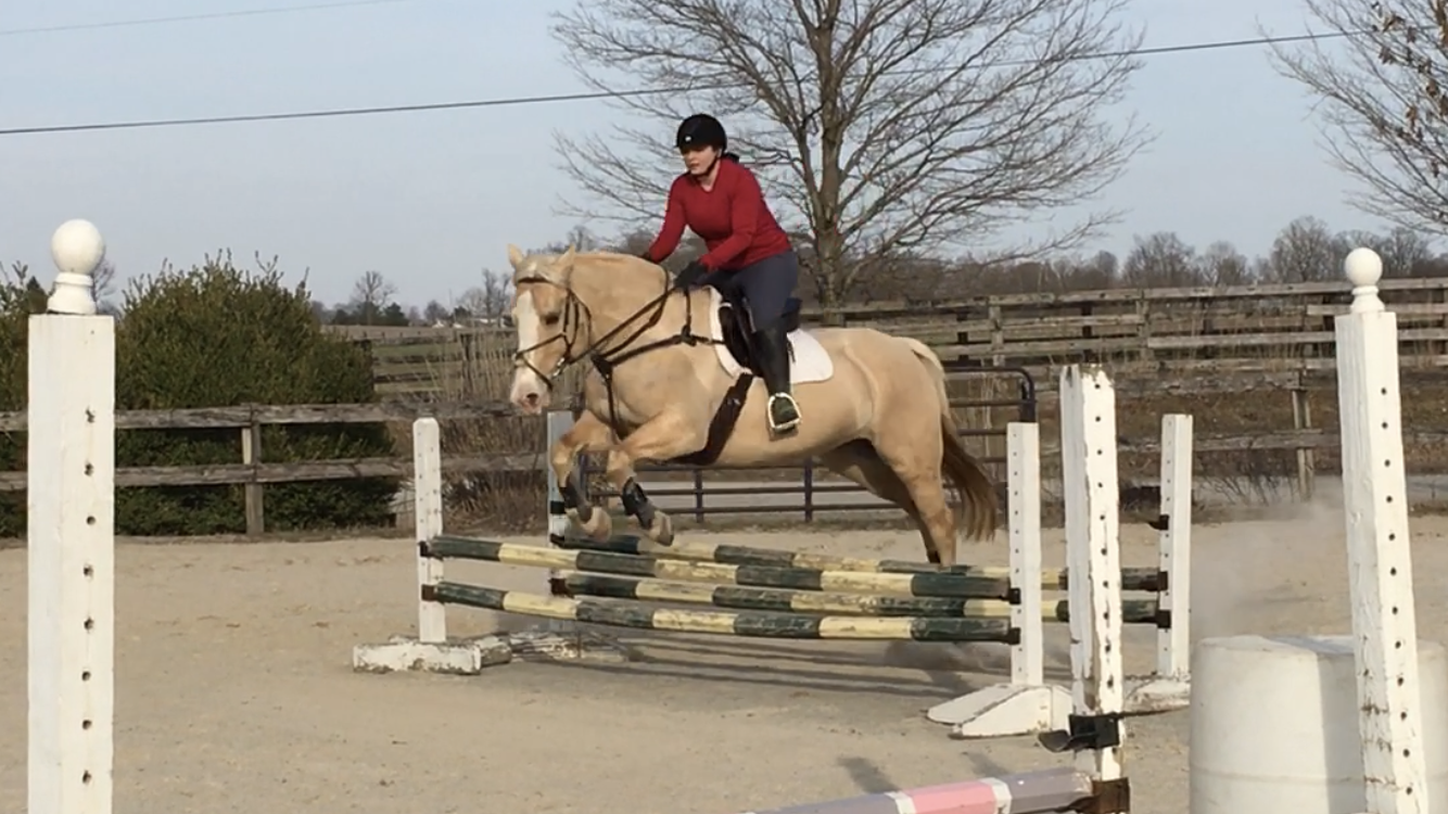 Perfect Princess Pony