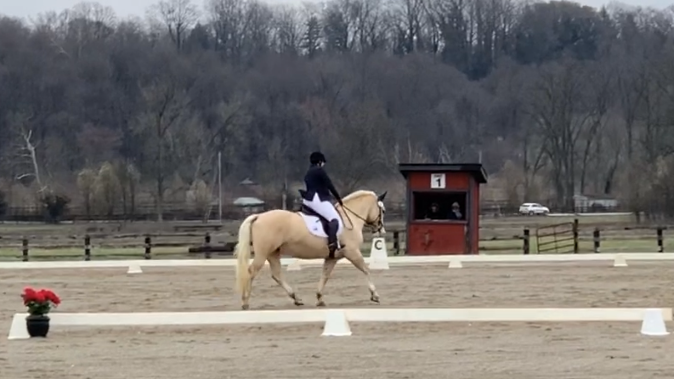 2020 Covered Bridge Pony Club CT – Dressage