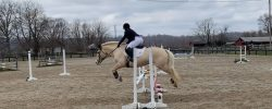 2020 Covered Bridge Pony Club CT – Show Jumping