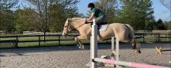 Jumping Lesson & May Virtual Show
