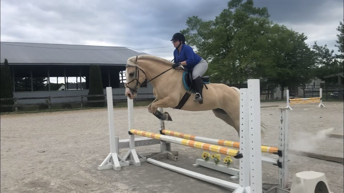 Better Late Than Never – Jump Lesson Recap