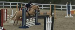 The Unicorn Saddle Search Recap