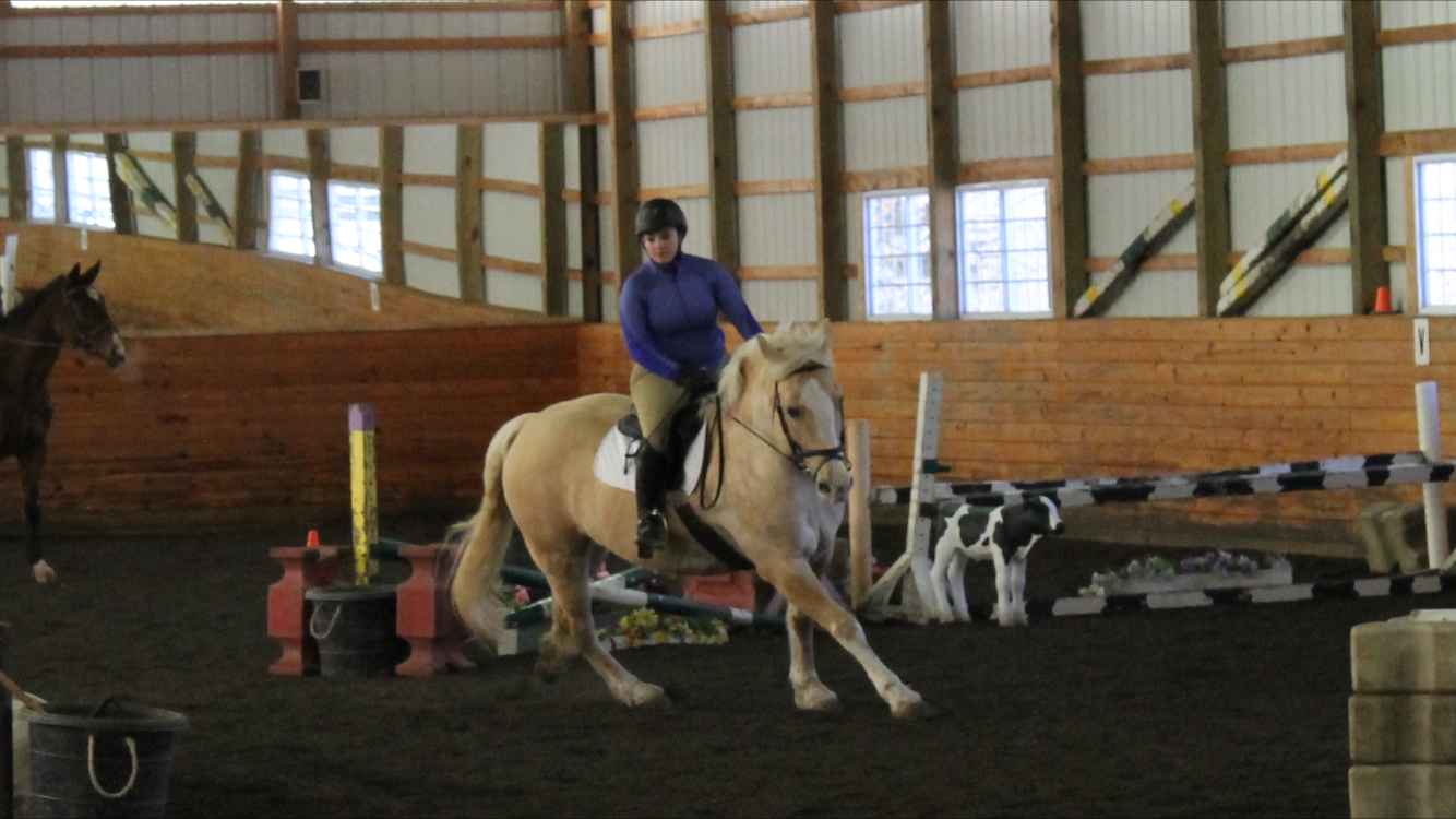 12.11.2018 – Jumping Lesson
