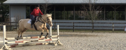 Jump Lesson Recap!