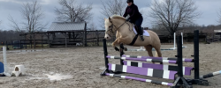 First Jump Lesson of 2020!