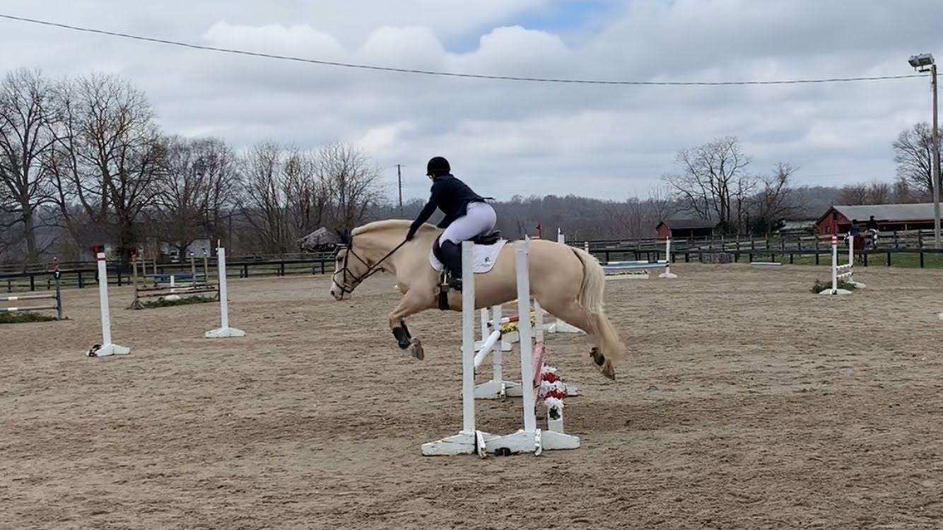 2020 Covered Bridge Pony Club CT – Show Jumping