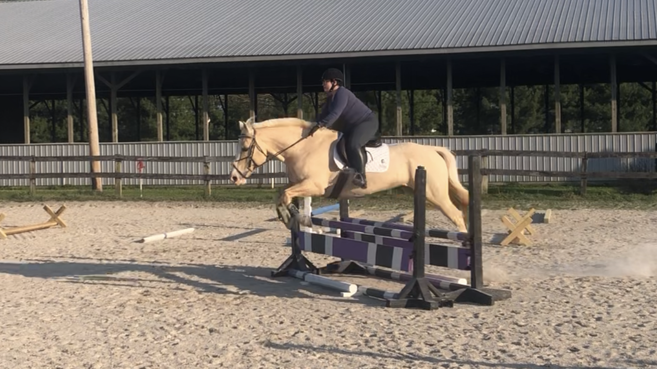 April Virtual Horse Show – Show Jumping