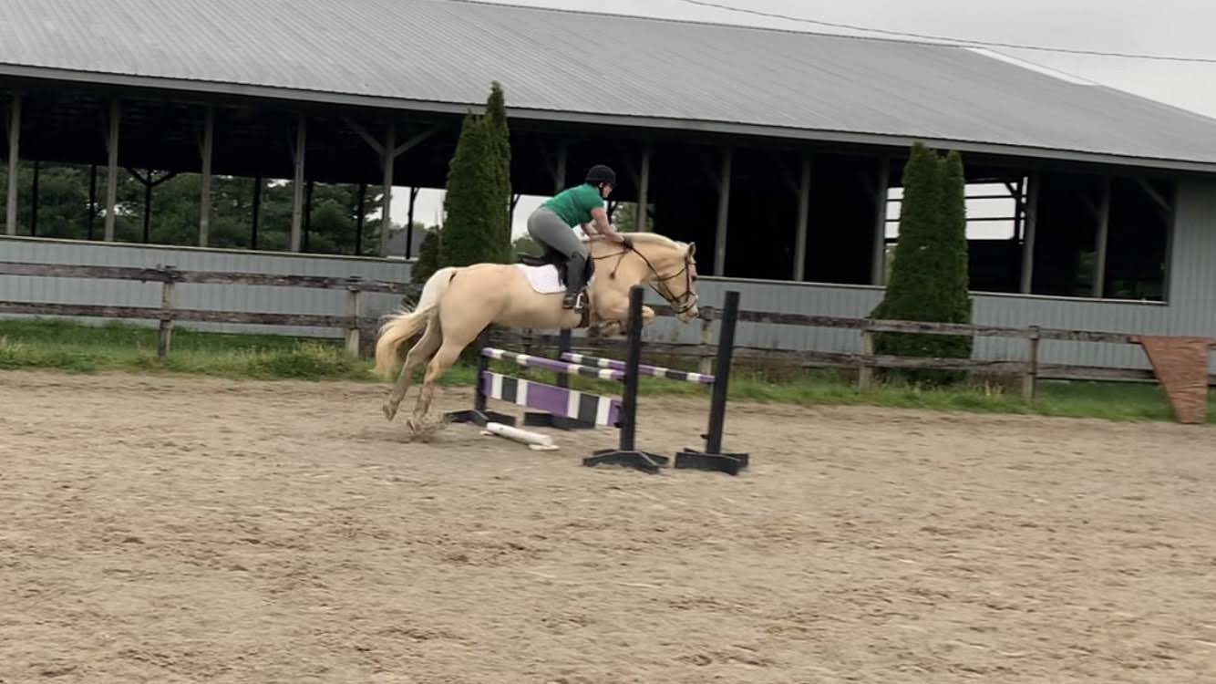 May Virtual Show – Show Jumping Score Card