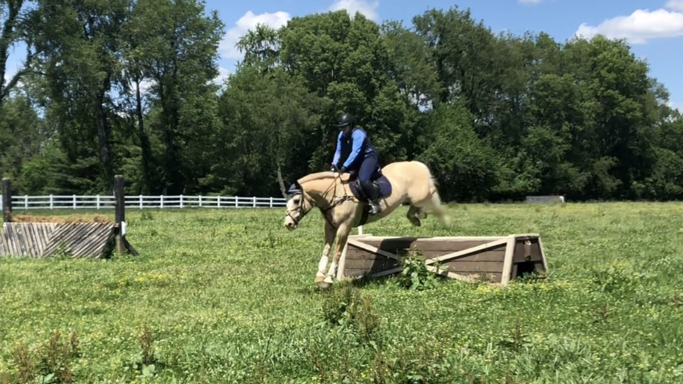 Copper Meadows – One Day Schooling Show