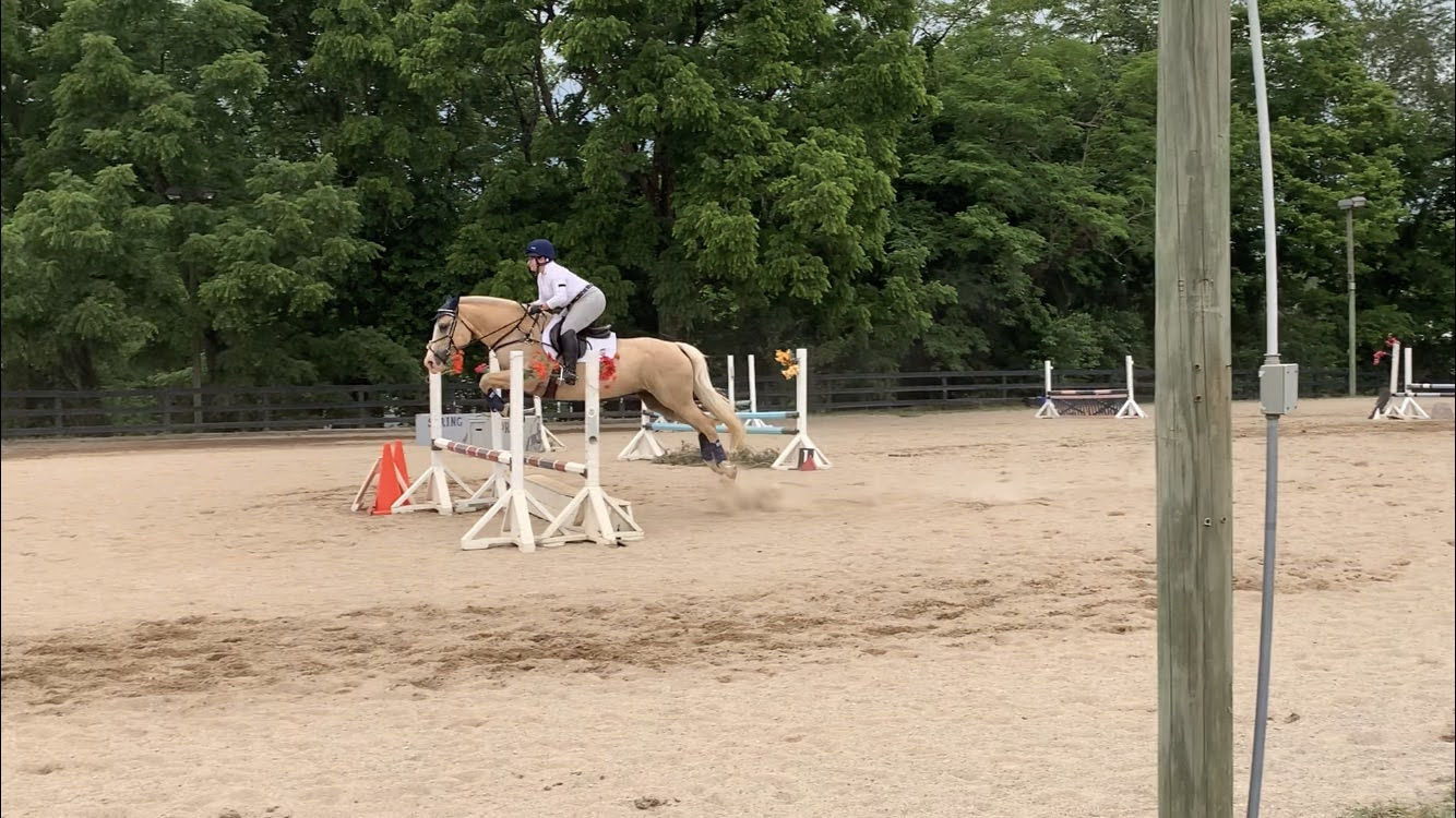 June 2020 – Spring Run Mini Trial – Show Jumping
