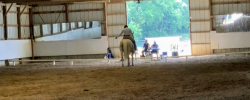 June 2020 – Spring Run Mini Trial – Dressage