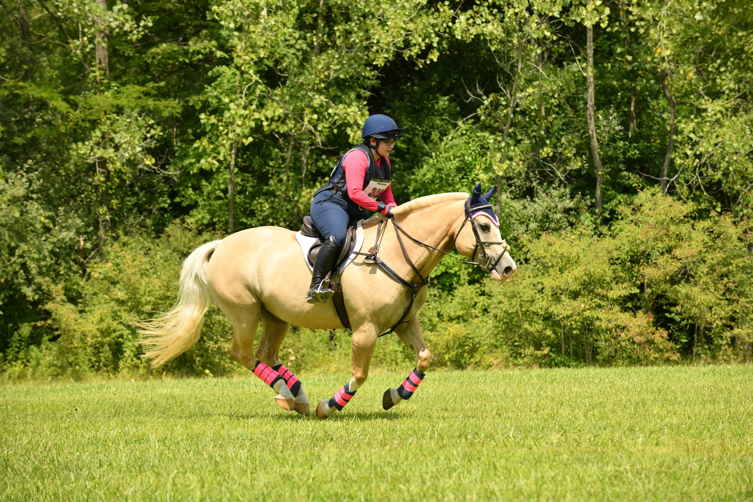2020 IEA Horse Trials – Results and Wrap Up