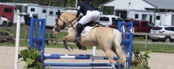 2020 IEA Horse Trials – Show Jumping
