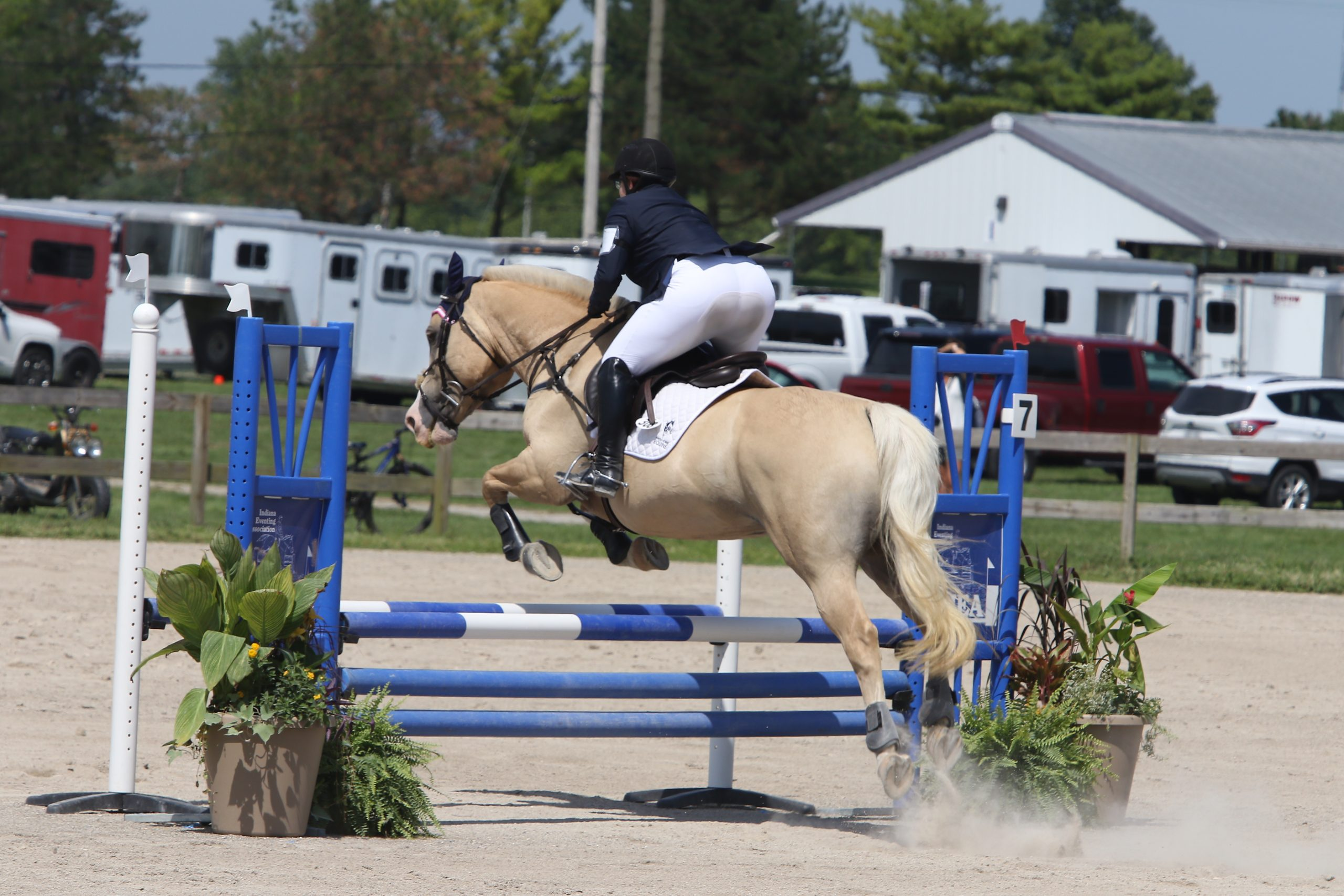 2020 IEA Horse Trials – Show Jumping
