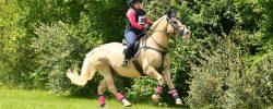 2020 IEA Horse Trials – Cross Country
