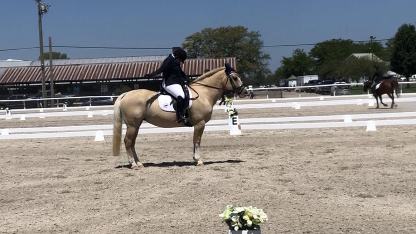 First California Horse Trial – Dressage