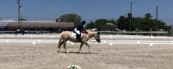 2020 IEA Horse Trials – Dressage