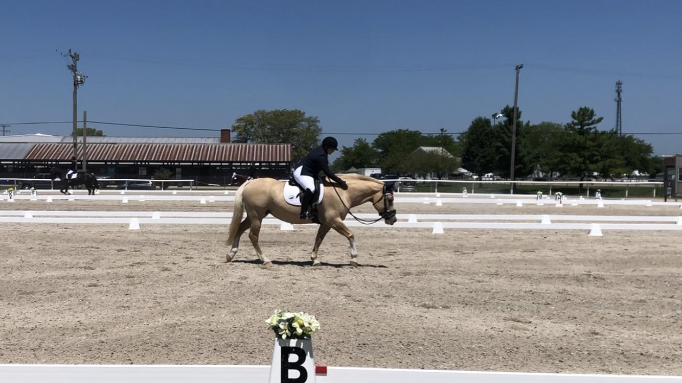 2020 IEA Horse Trials – Dressage